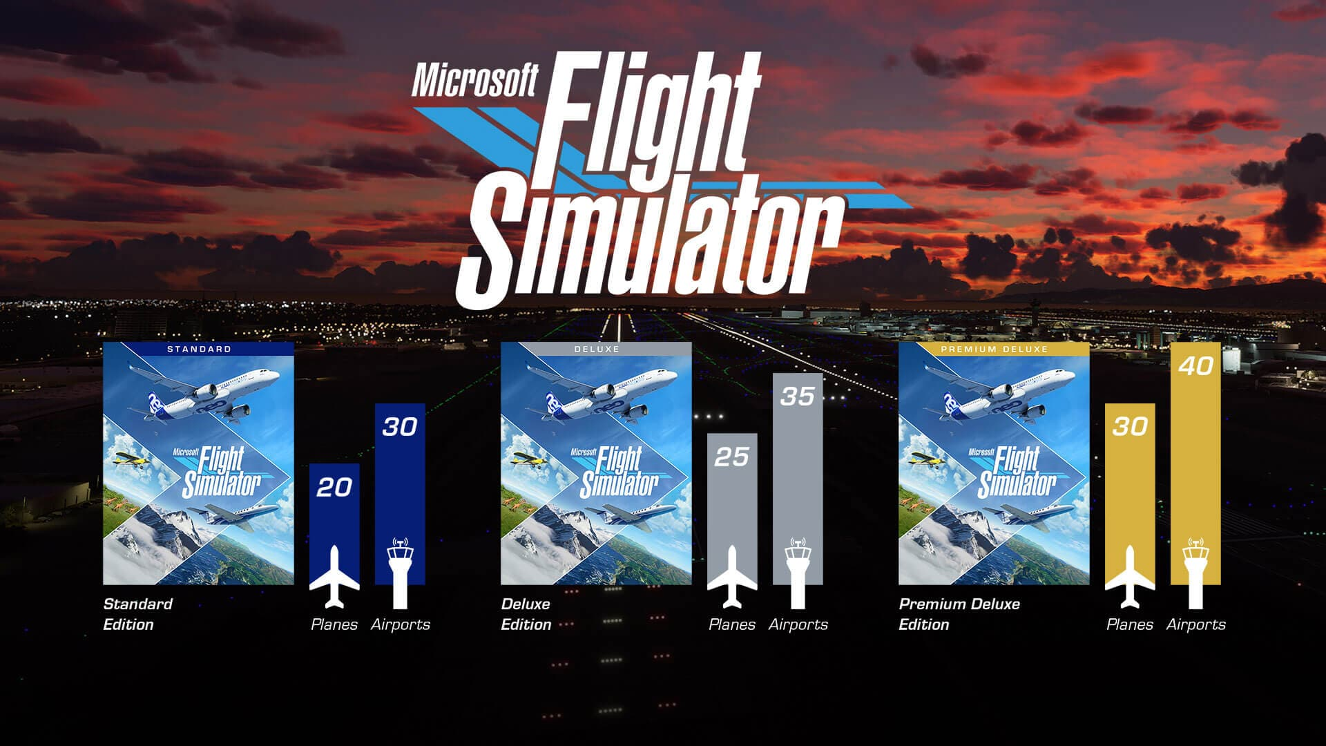 Flight Simulator Infographic