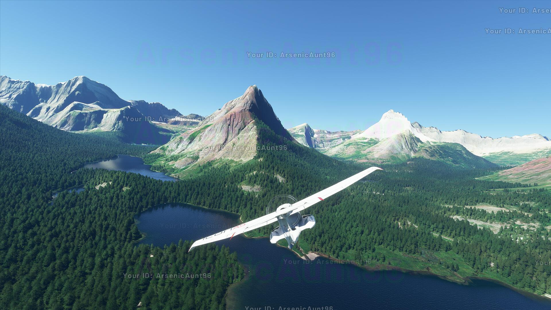 Microsoft-Flight-Simulator-Alpha-8_13_20
