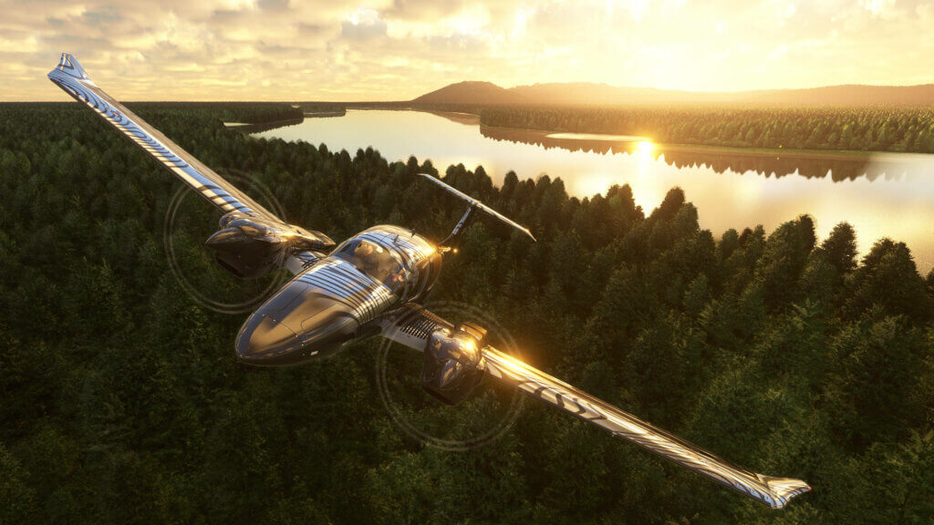 Plane flying over temperate forest